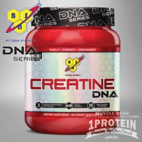 BSN DNA Creatine 309 grams